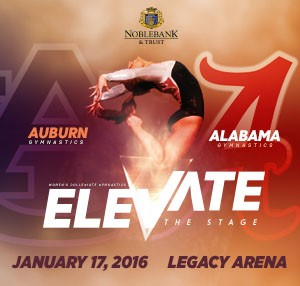 Elevate the Stage Logo