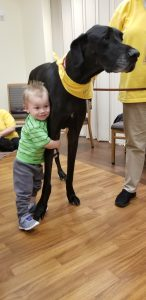 Brantley meets Duke the Hand in Paw therapy dog. (Source: Michelle Jarrard)